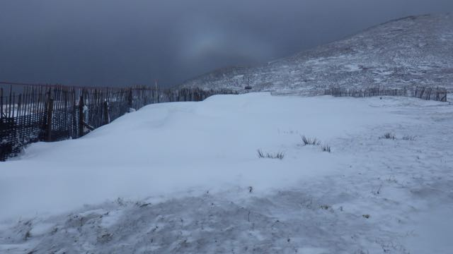 Cornices forming on a drift behind a snow fence at 650m.