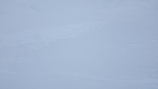 Skier triggered avalanche at 780m on North aspect.