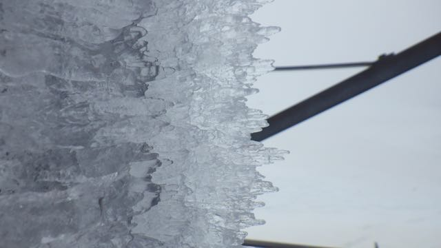 Rime ice which formed overnight was melting and collapsing.