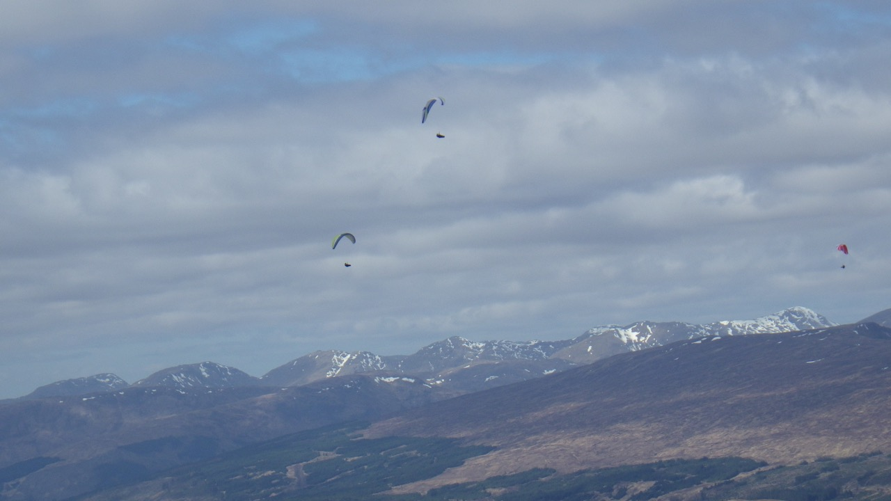 Paraglider's enjoying the views